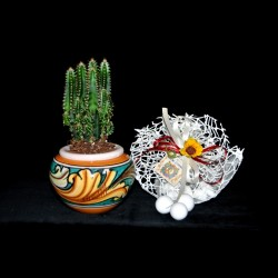 Bomboniera cachepot (con pianta grassa vera) in ceramica  Caltagirone.